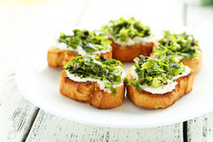 Tasty fresh bruschetta Royalty Free Stock Photos