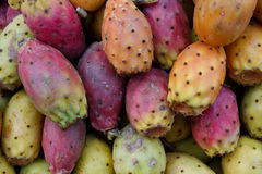 Tasty fresh cactus pears Stock Photos