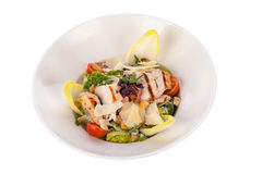 Tasty fresh caesar salad with grilled chicken and parmesan Stock Photography