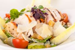 Tasty fresh caesar salad with grilled chicken and parmesan Royalty Free Stock Photos