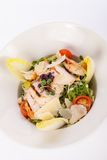 Tasty fresh caesar salad with grilled chicken Stock Photography