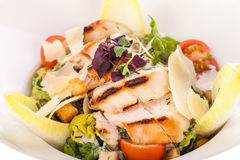 Tasty fresh caesar salad with grilled chicken and parmesan Royalty Free Stock Photo