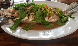Tasty fresh fish served in a plate. royalty free stock images