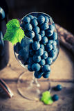 Tasty and fresh red grapes in glass Royalty Free Stock Photography