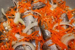 Tasty fresh river fish with carrots, onions and spices, closeup cooking. Tasty fresh river fish with carrots, onions and spices, cooking closeup, background stock photo