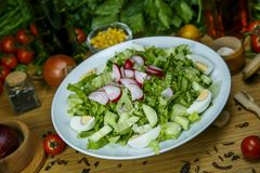 Bulgarian fresh salad Royalty Free Stock Images