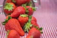 Tasty fresh strawberries in glass storage jar Royalty Free Stock Photo