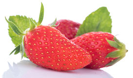 Tasty fresh strawberries Royalty Free Stock Image