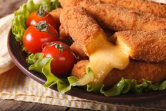 Tasty fried cheese close-up and fresh vegetables Stock Images