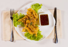 Tasty Fried Chicken Meat Recipe with Hot Dip Sauce Royalty Free Stock Photography