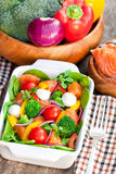 Tasty fried and grilled salmon  slices on mixed colorful vegetabl Royalty Free Stock Photo