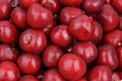 Tasty frozen cherry . background Stock Image