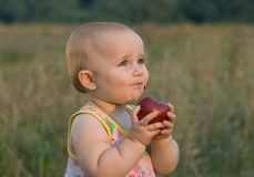 Tasty fruit. An apple. Royalty Free Stock Images