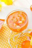 Tasty fruit jelly with slices orange Royalty Free Stock Photos