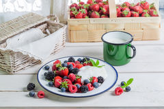 Tasty fruits with yogurt Royalty Free Stock Image