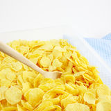 The tasty golden corn flakes in plastic container box Royalty Free Stock Photo