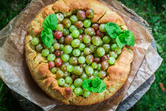Tasty gooseberry pie in garden Royalty Free Stock Images