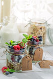 Tasty granola with fruits and yogurt Royalty Free Stock Images