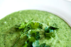 Tasty green spinach soup Royalty Free Stock Photography
