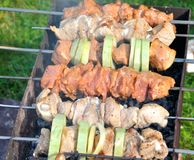 Tasty grill kebab on a charcoal with onion Royalty Free Stock Photo
