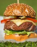 Tasty grilled burger on a grass Stock Photography