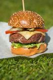 Tasty grilled burger on a grass Royalty Free Stock Photo