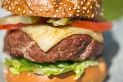 Tasty grilled burger on a grass Royalty Free Stock Photos