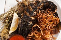 Tasty grilled goby with onion rings close-up Royalty Free Stock Images