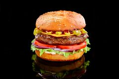 Tasty Grilled Home Made Burgers With Beef Royalty Free Stock Photo