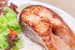Tasty grilled salmon Stock Photography