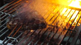 Tasty grilled steak in oven stock footage