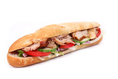Tasty gyros baguette. Isolated on white Royalty Free Stock Images