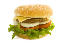 Tasty hamburger Stock Photo