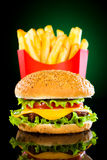 Tasty Hamburger And French Fries Stock Images