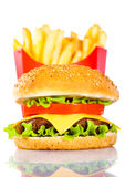 Tasty hamburger and french fries Stock Photos