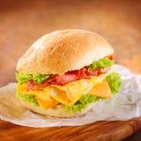 Tasty hamburger with ham, cheese and lettuce Royalty Free Stock Photos