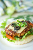 Tasty hamburger with lettuce and tomato Royalty Free Stock Photography