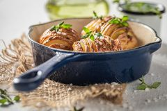 Free Tasty Hasselback With Salt, Herbs And Oil Royalty Free Stock Photos - 165990908