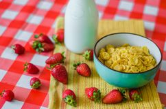 Tasty healthy breakfast, fresh milk in glass bottle, cereals with honey and nuts in green ceramic bowl and tasty yogurt royalty free stock image