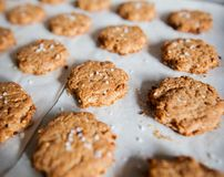 Tasty and healthy fresh crackers Royalty Free Stock Images