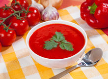 Tasty and healthy tomato soup and vegetables on the table Stock Photography