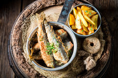 Tasty herring fish with chips and salt Stock Photos