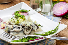 Tasty herring in pieces. Royalty Free Stock Images
