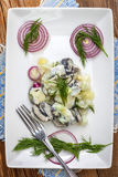 Tasty herring in pieces. Royalty Free Stock Photo