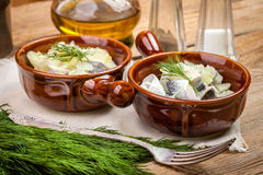 Tasty herring in pieces. Royalty Free Stock Image