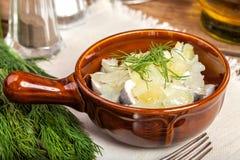 Tasty herring in pieces. Stock Photos