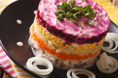 Tasty herring salad with vegetables and mayonnaise closeup. horizontal royalty free stock images