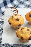 Tasty home made muffins with whisk covered in melting chocolate Stock Image