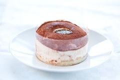 Tasty home made tiramisu cake Royalty Free Stock Images