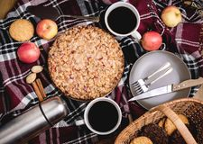 Tasty homemade apple pie Apple pie Apples Cinnamon Plate Woolen blanket Wooden background Top view Picnic Thermos Picnic basket Royalty Free Stock Photography